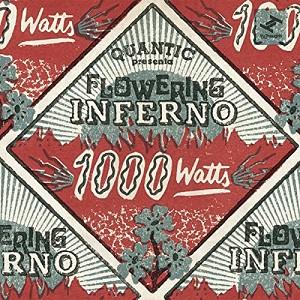 QUANTIC PRESENTA FLOWERING INF - 1000 WATTS