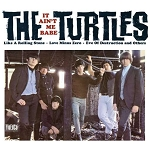 TURTLES - IT AIN'T ME BABE
