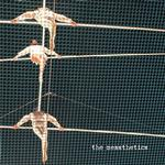 THE MESSTHETICS - MESSTHETICS