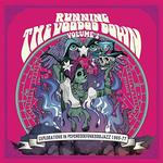 VARIOUS ARTISTS - RUNNING THE VOODOO DOWN 2: EXPLORATIONS IN PSYCHROCKFUNKSOULJAZZ 1965-77