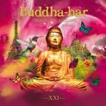 VARIOUS ARTISTS - BUDDHA BAR XXI