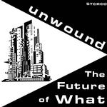 UNWOUND - THE FUTURE OF WHAT (LP)