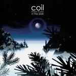 COIL - MUSICK TO PLAY IN THE DARK (CLEAR VINYL)