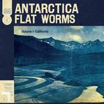 FLAT WORMS - ANTARCTICA